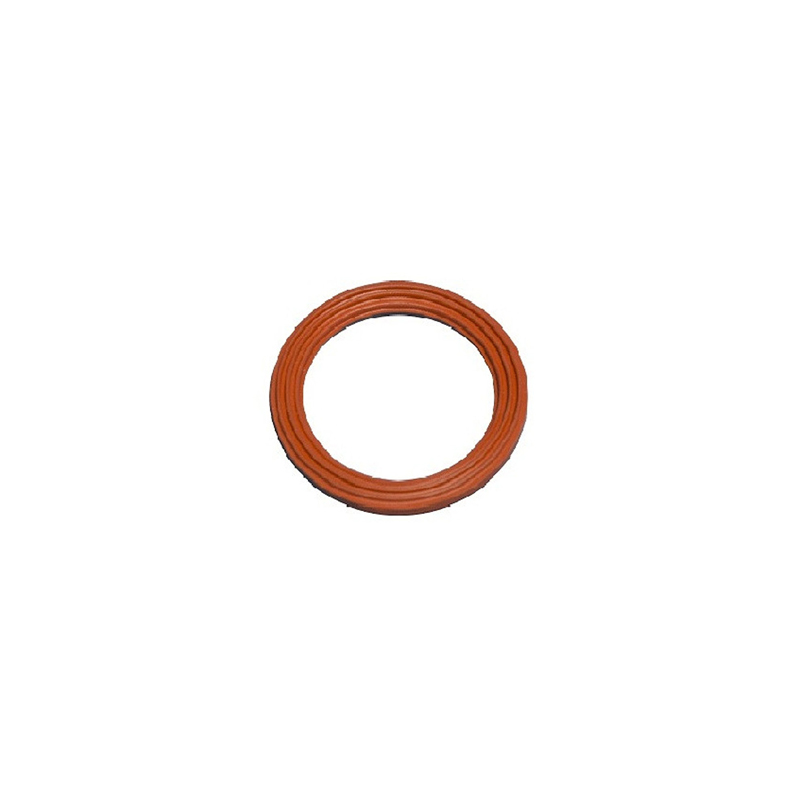 343317 2in Viton Ribbed Outlet Gasket