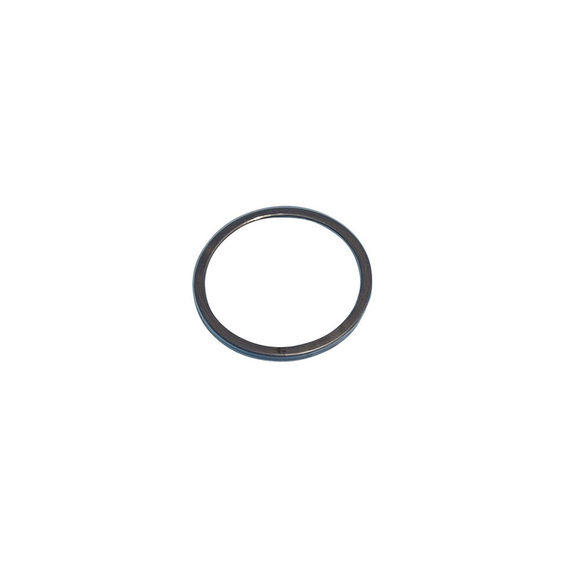 343808 2in PTFE Over Viton Bung Plug Gasket