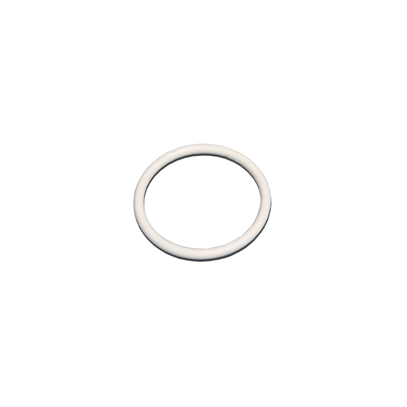 345966 2in PTFE Gasket for 3:1 Vent